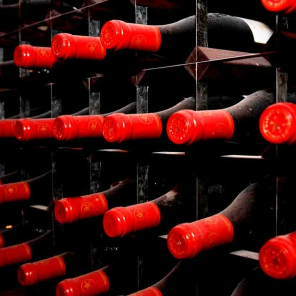 Detalle de botellas Châteauneuf du Pape envejeciendo
