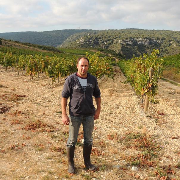 Viticultor en viñedo