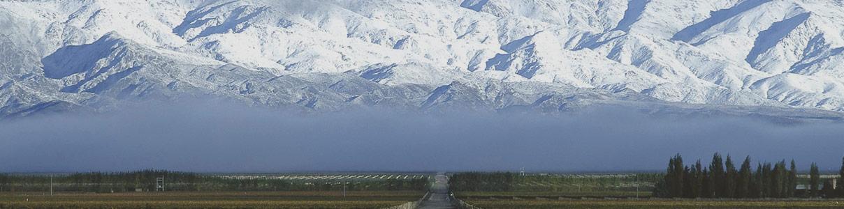 Terrazas de los Andes